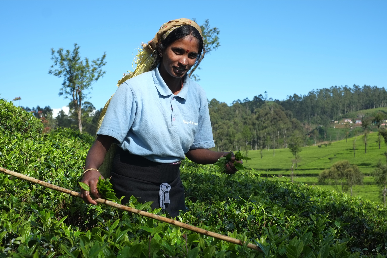 Sri Lanka Chica Con Amigos - esbiguznet